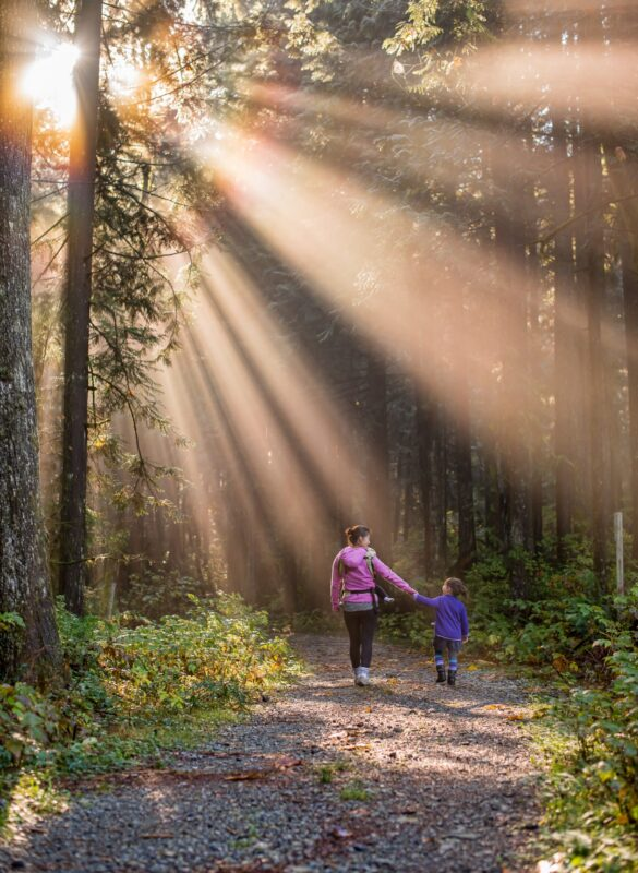 parent and child walking through a forest