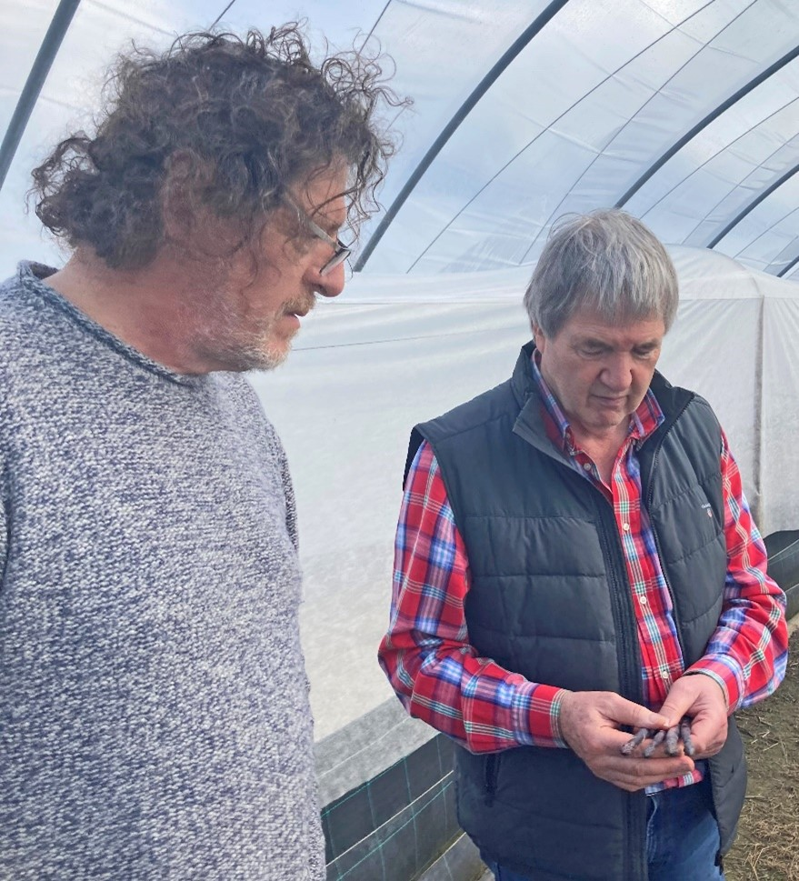 Ken and Marco Pierre White in the asparagus houses
