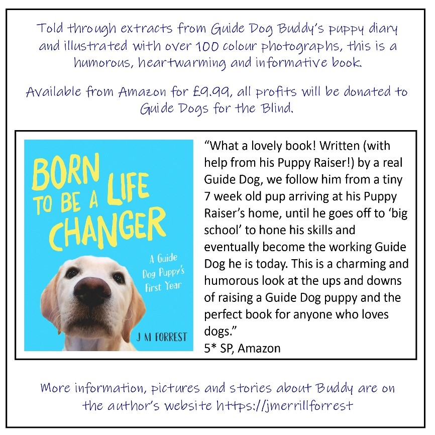 Information about the born to be a life changer book - Told through extracts from Guide dog Buddy's puppy diary and illustrated with over 100 colour photographs, this is a humorous, heartwarming and informative book. All profits will be donated to Guide Dogs for the Blind.