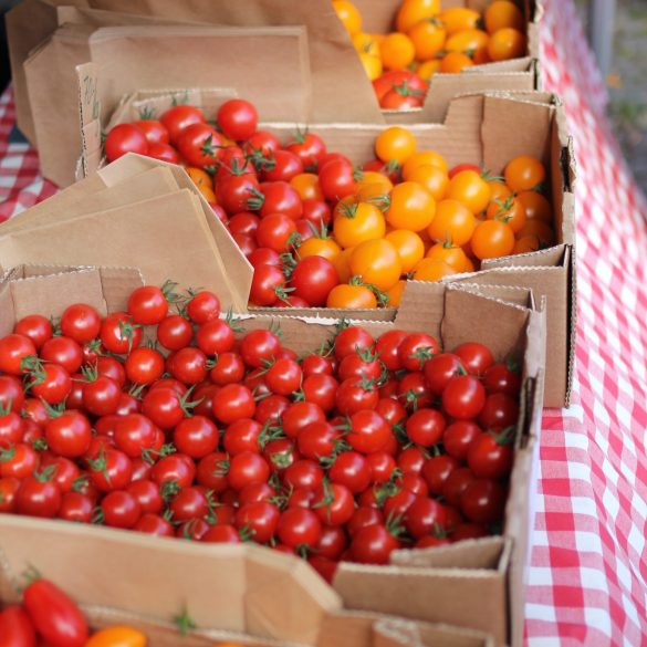 Assorted tomatoes in boxes